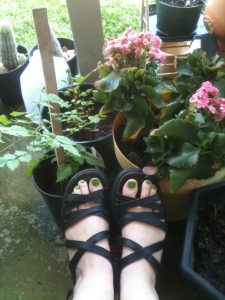 An Ode to My Love of Shoes